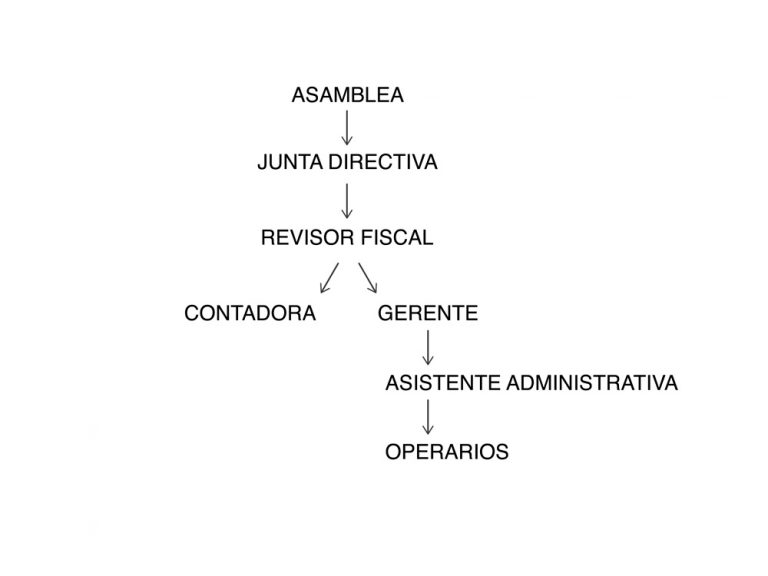 Organigrama-ok